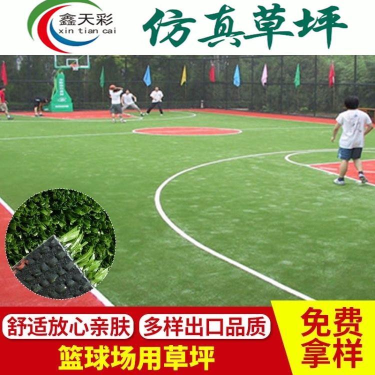 鑫天彩 足球场草坪 人造假草坪 厂家直销