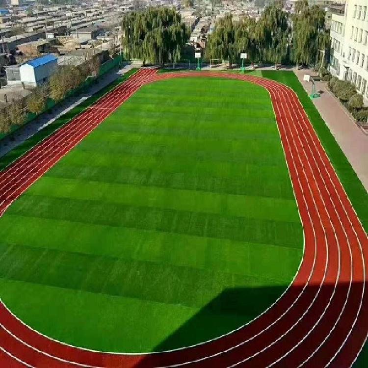 仁怀人造草坪售卖足球场草围挡草贵康茂体育设施品质保证