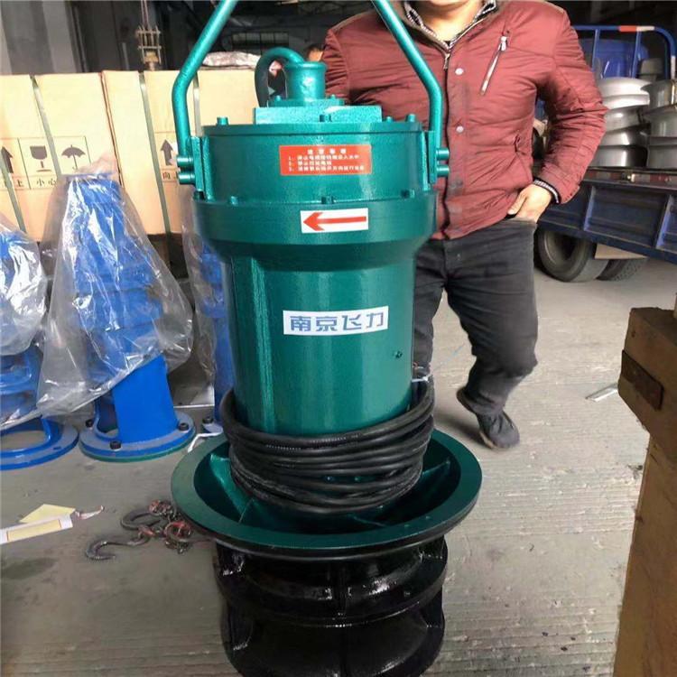 南京飞力供应30kw潜水轴流泵 大流量潜水轴流泵