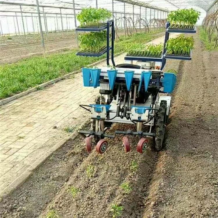 两行自走式蔬菜移栽机 全自动栽苗移植机 厂家货源充足