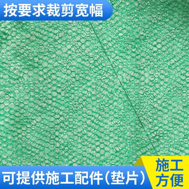 三维植被网 绿化护坡生态修复 NSS三维土工网垫 绿化护坡固土网垫 PE塑料网