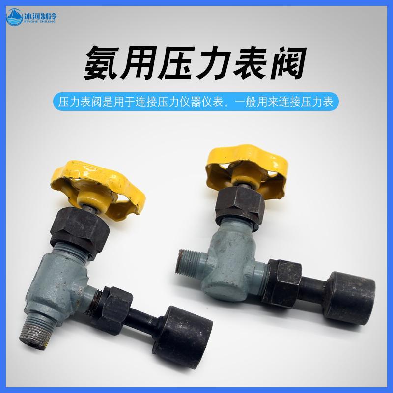 大连腾达钢质压力表阀氨用阀门管道连接压力表直通/直角