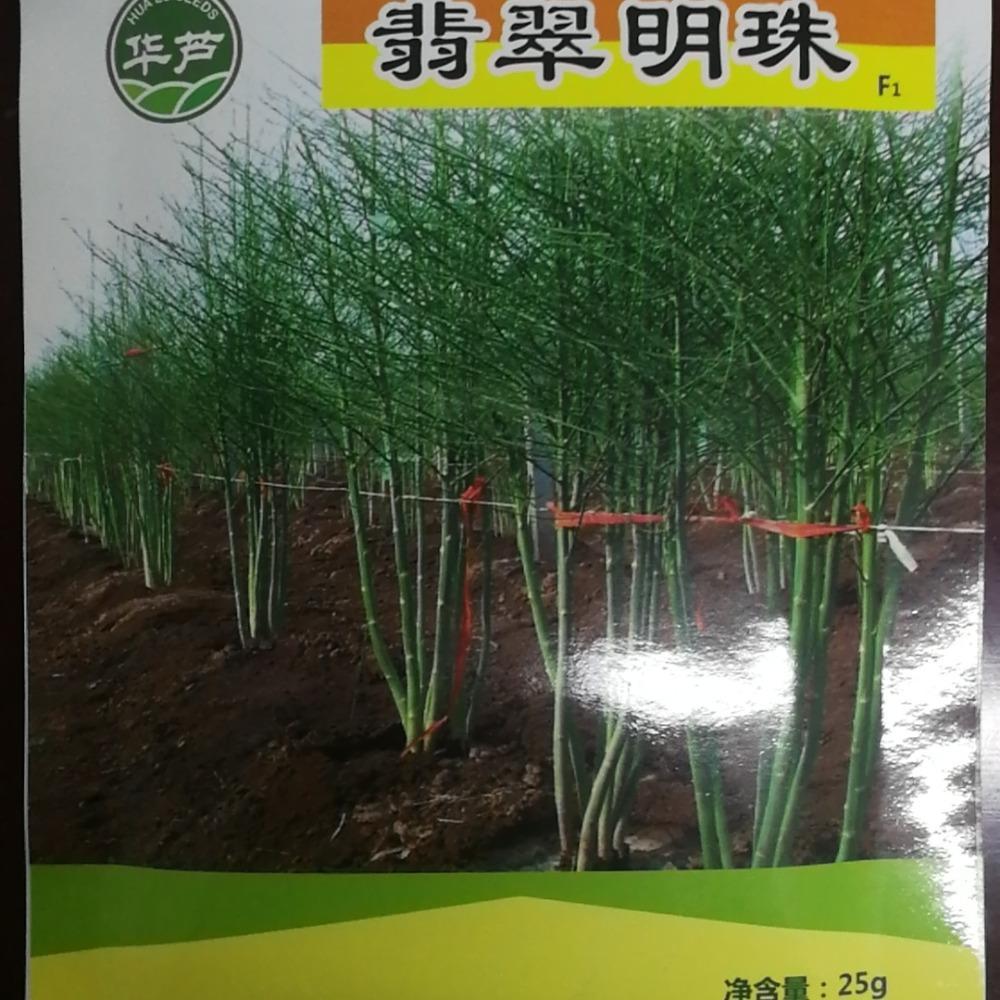 国产芦笋种子 翡翠明珠芦笋种子 现货供应 提供技术服务