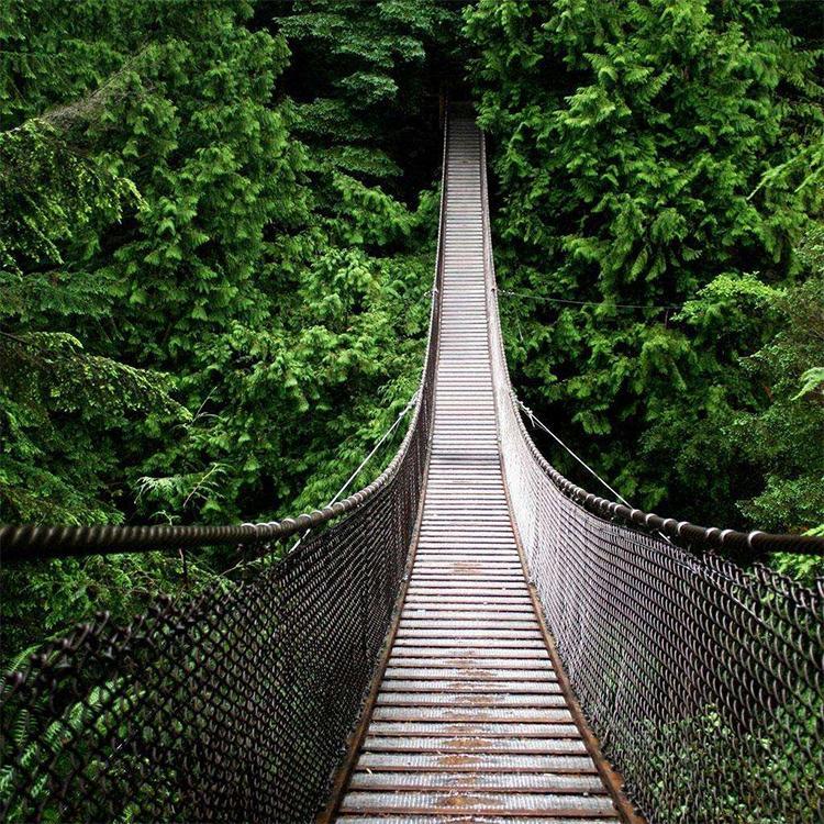 加工供应 悬索桥用钢丝绳 吊桥钢丝绳 厂家直销