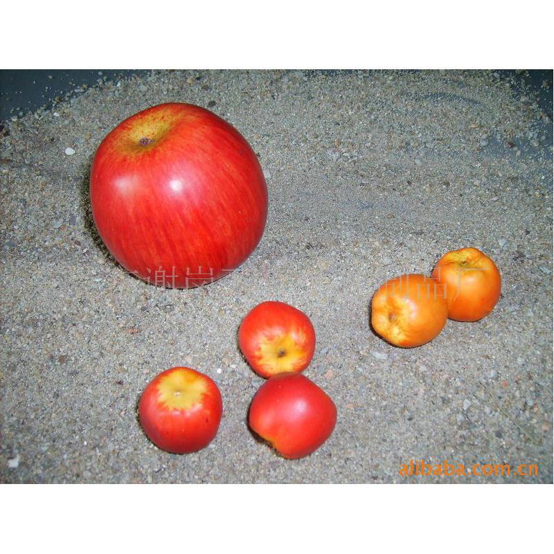 仿真水果模型摆件假水果套装 仿真香蕉串苹果摆件装饰早教道具