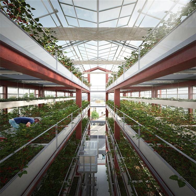 衡水立体农业厂家设计各种温室大棚定制策划家庭无土栽培技术视频温控大棚