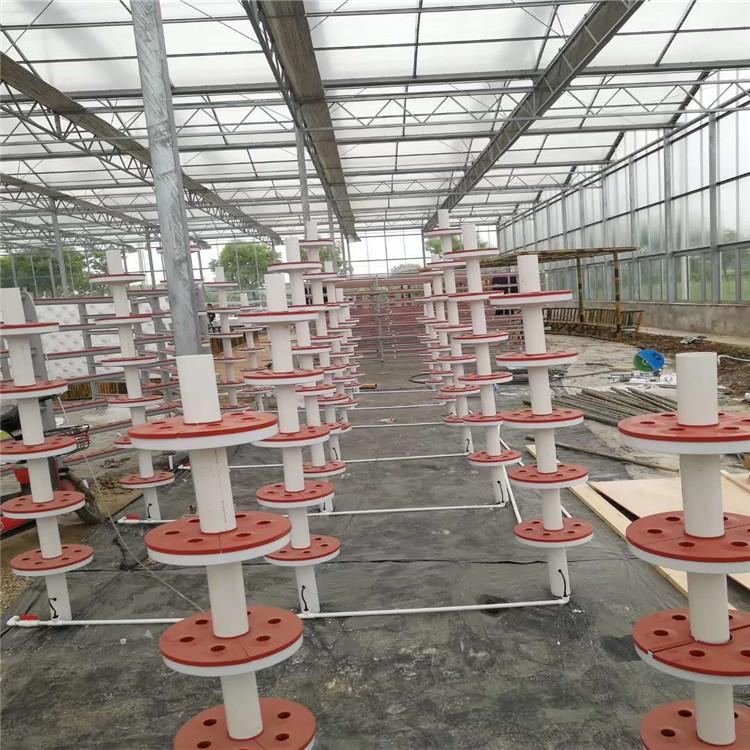 九江立体农业厂家设计各种温室大棚定制策划无土栽培技术大全智能种植