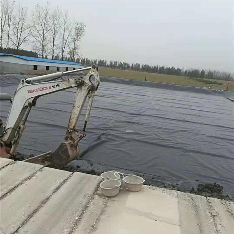 沼气池专用土工膜 HDPE土工膜 hdpe土工膜 复合土工膜
