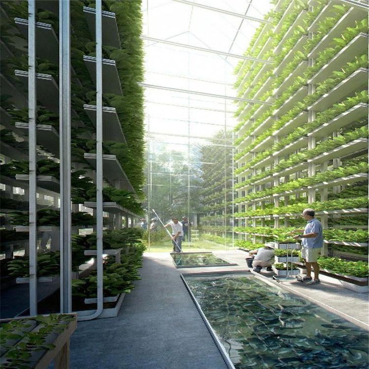 眉山立体农业厂家设计各种温室大棚定制策划西瓜无土栽培技术视频温控大棚