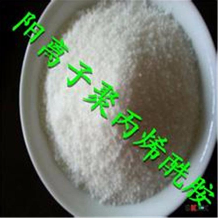 PAM聚丙烯酰胺 阴离子 阳离子聚丙烯酰胺污水处理药剂 正喆厂家直销