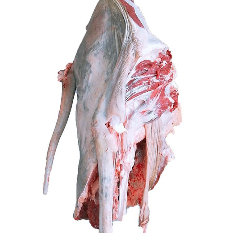 新鲜驴肉价格 茂隆冷冻生驴肉厂家供应