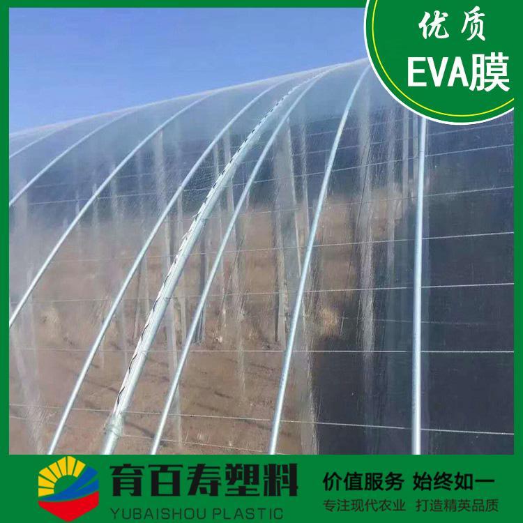 育百寿牌农膜 EVA塑料大棚膜 可降解 可定制