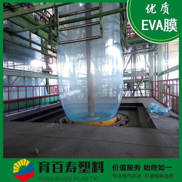 育百寿牌农膜 高透光EVA薄膜 蔬菜专用 现货出售