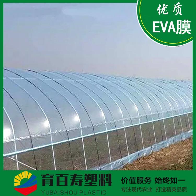 育百寿牌农膜 EVA抗老化塑料大棚膜 温室大棚专用 厂家批发