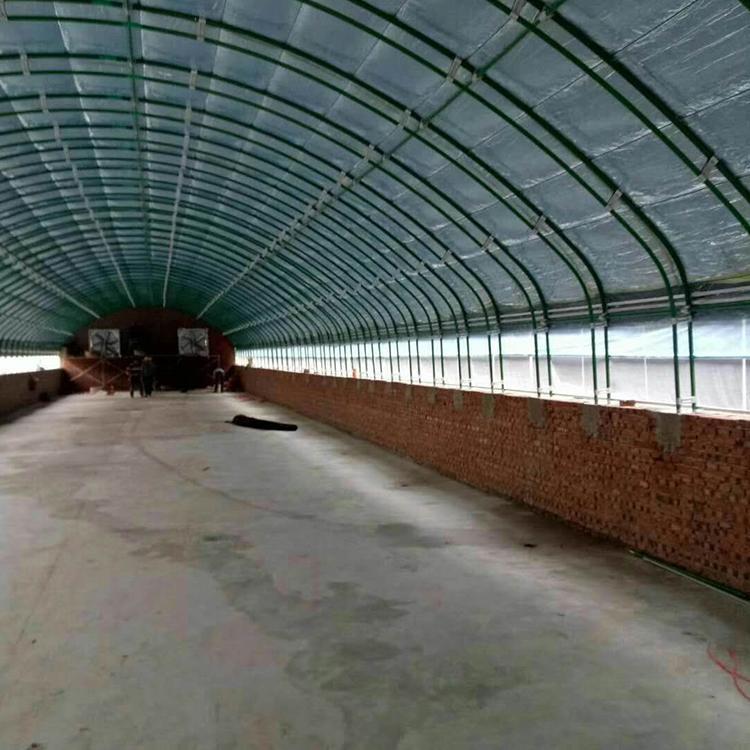 保禹厂家直销冬暖式大棚 保禹日光温室建造冬暖式蔬菜大棚