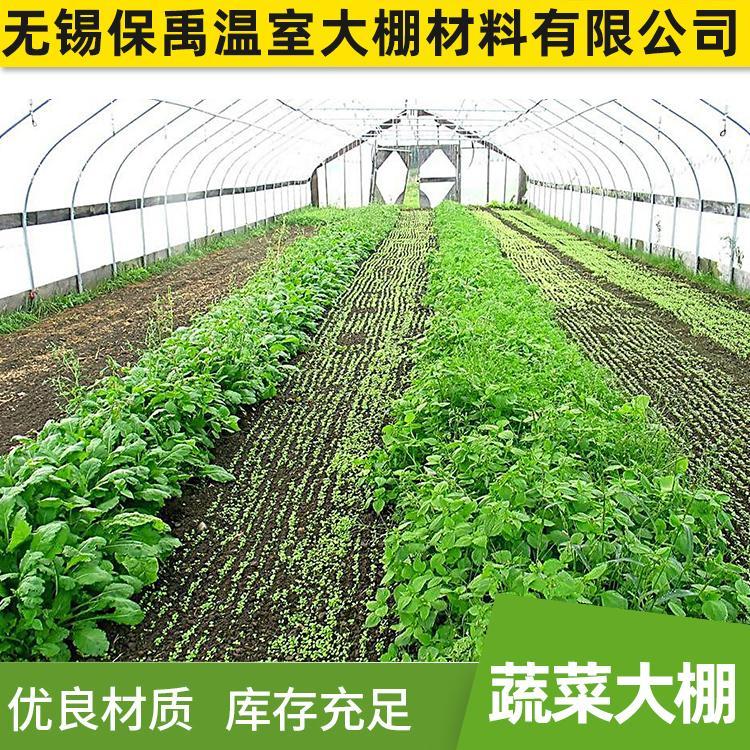保禹可定制蔬菜大棚植物种植温室大棚量大优惠厂家直销