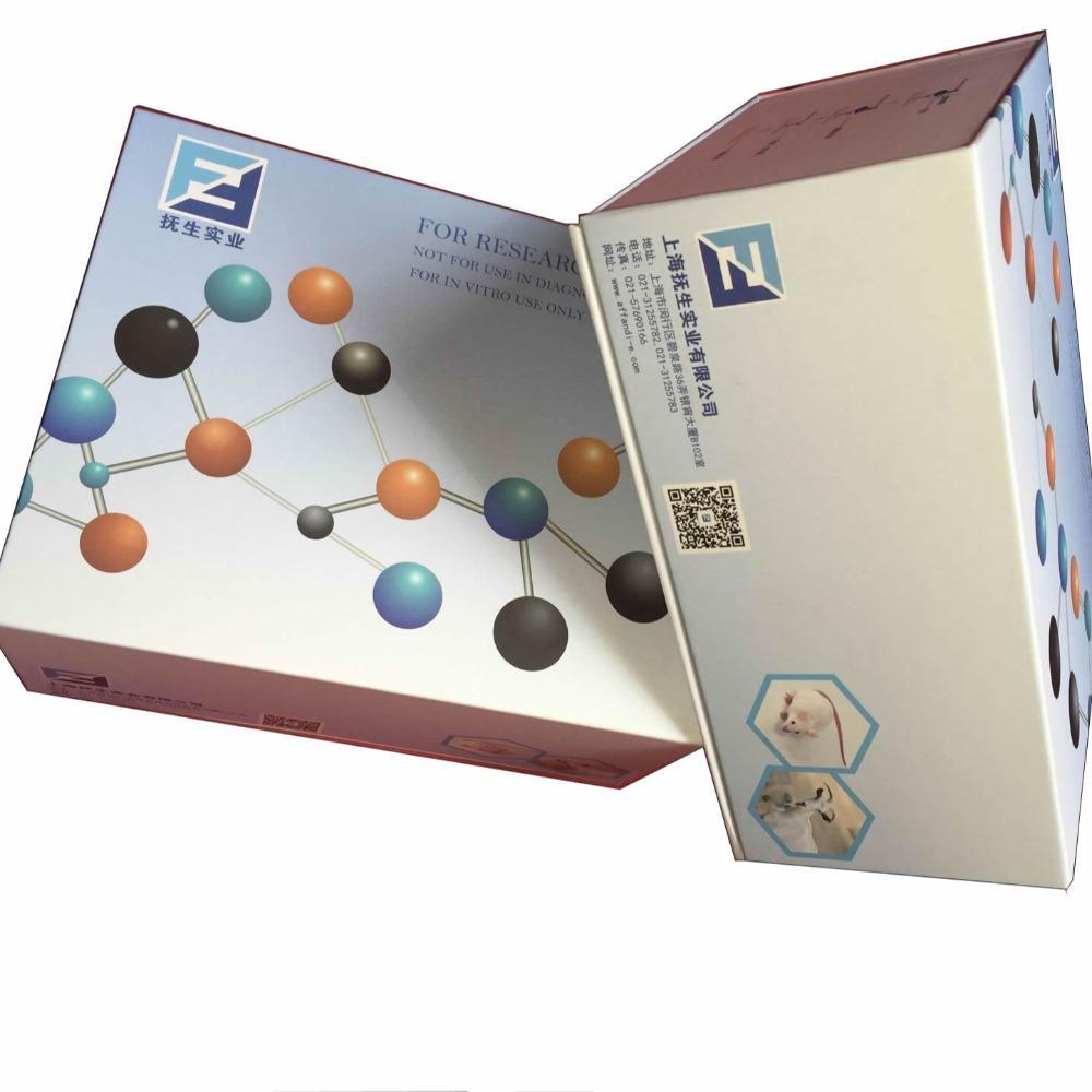 小鼠乙型肝炎表面抗体elisa检测试剂盒厂家