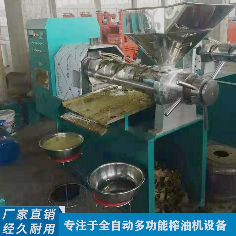 小型芝麻香油榨油机 220伏花生菜籽榨油机设备