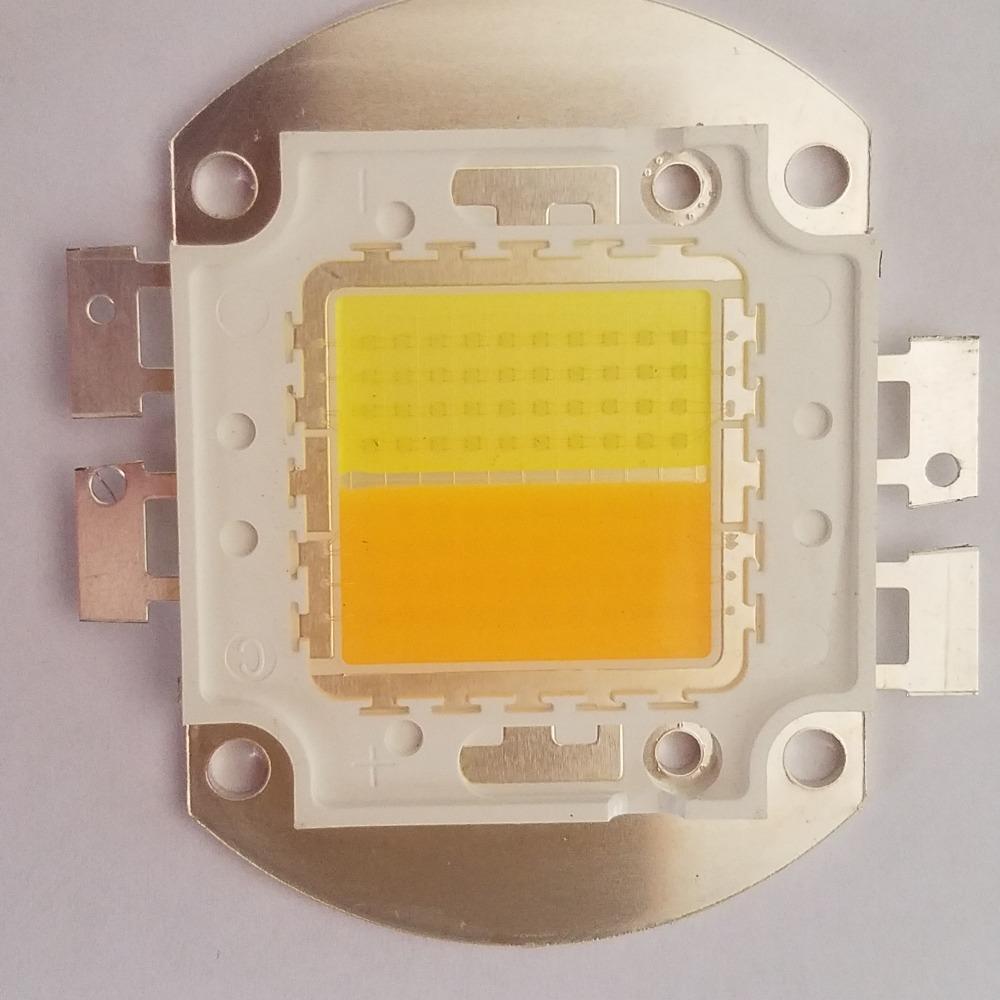 厂家直销 高 100W双色集成大光源-高亮-高显 -高效-高节能光源灯珠-大功率集成灯珠