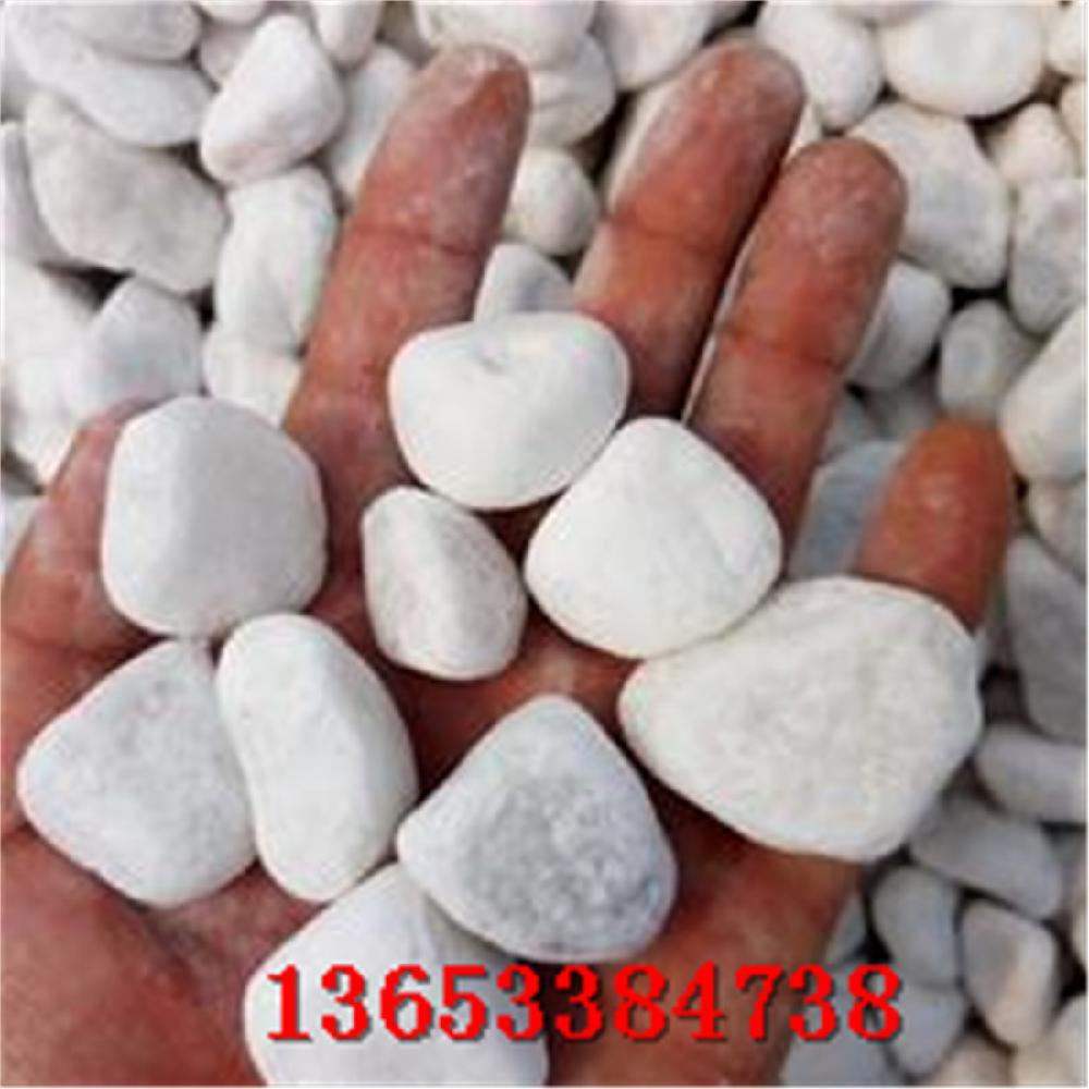 白色鹅卵石价格 北京公园抛光白色鹅卵石批发