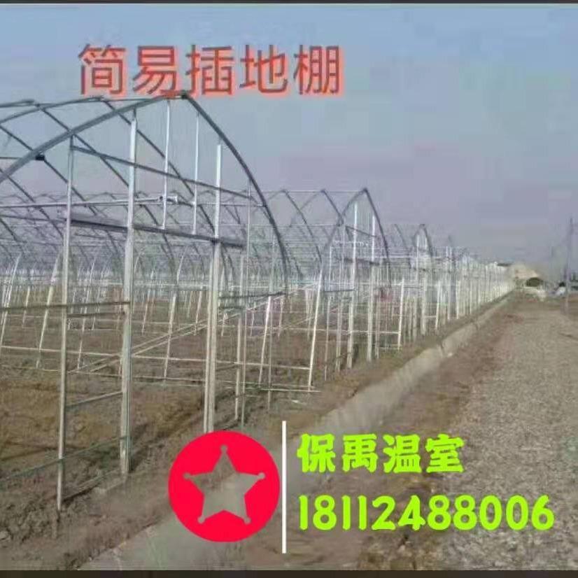 保禹温室[现货]养殖大棚 6分养猪大棚管 养鸡大棚 养鸭大棚