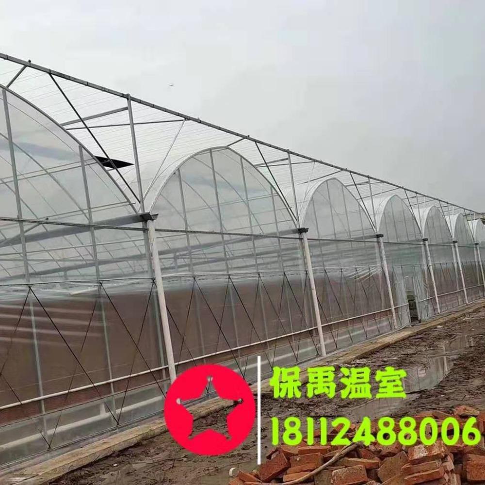 养殖蔬菜种植大棚骨架 专业定制大棚钢管 山东温室大棚骨架批发