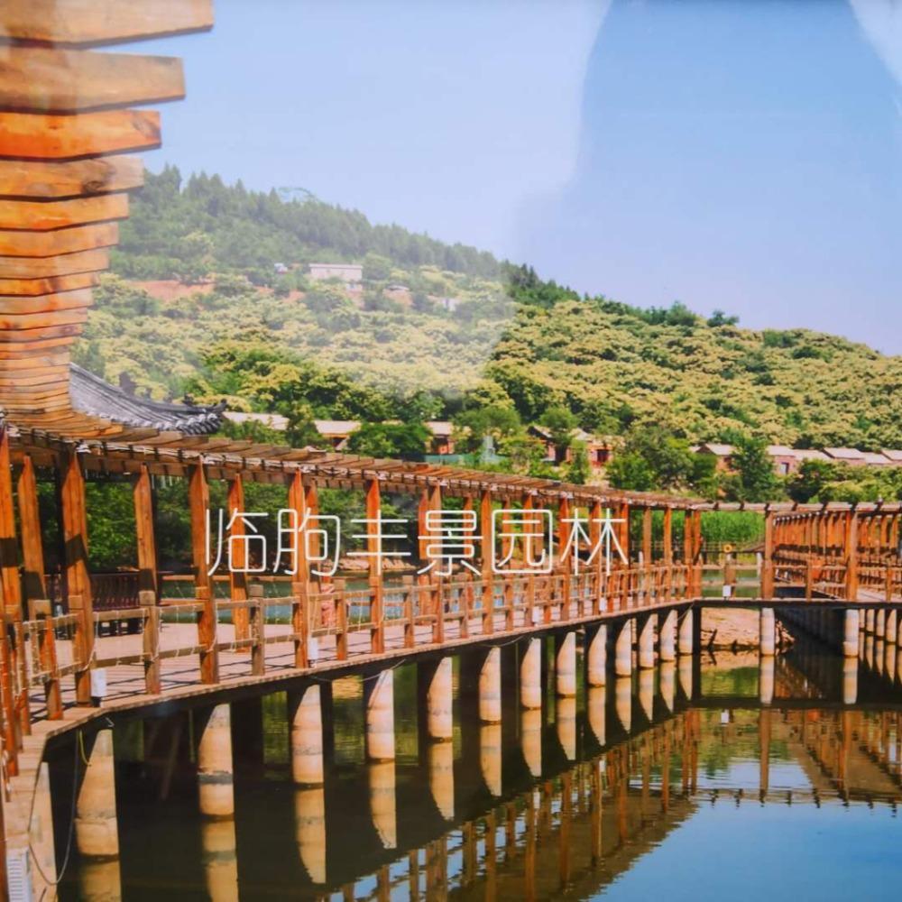 临朐丰景园林 木栈道 亲水平台 混凝土栈道生产厂家 水中嬉戏平台 曲桥