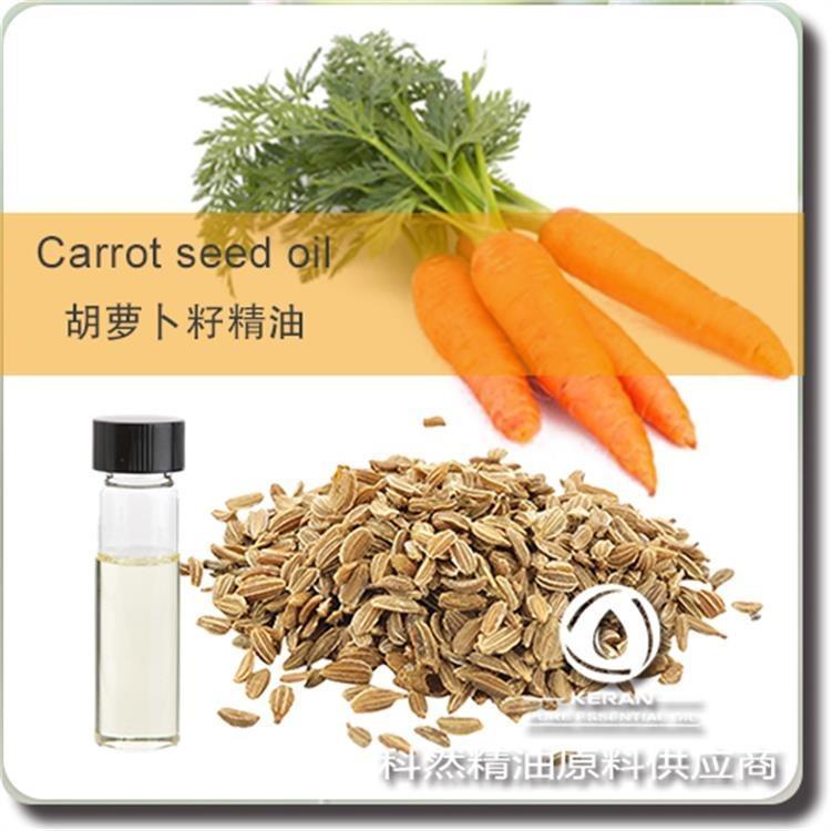 胡萝卜籽精油 蒸馏胡萝卜籽精油源头厂家