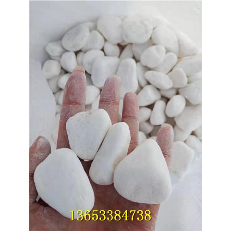 5-8cm白色洗米石 襄樊永顺白色洗米石厂家