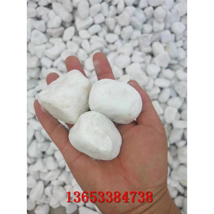 园林绿化白色洗米石 承德永顺白色洗米石价格批发