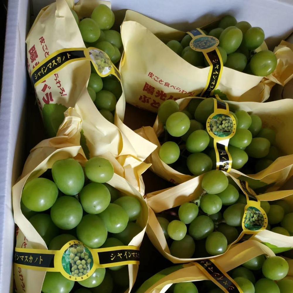 安徽玲鼎包装厂家直销15*35阳光玫瑰葡萄包装袋 梯形包装袋