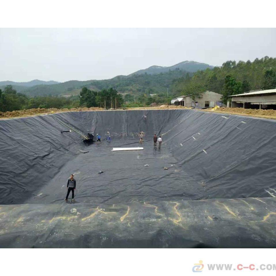 鼎诺土工膜 专业土工膜生产厂家 鼎诺土工膜价格批发优惠