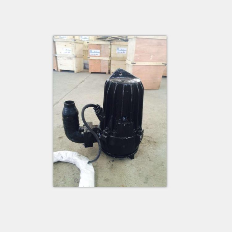 硝化液回流泵 自耦式潜污泵 切割潜污泵生产厂家蓝污