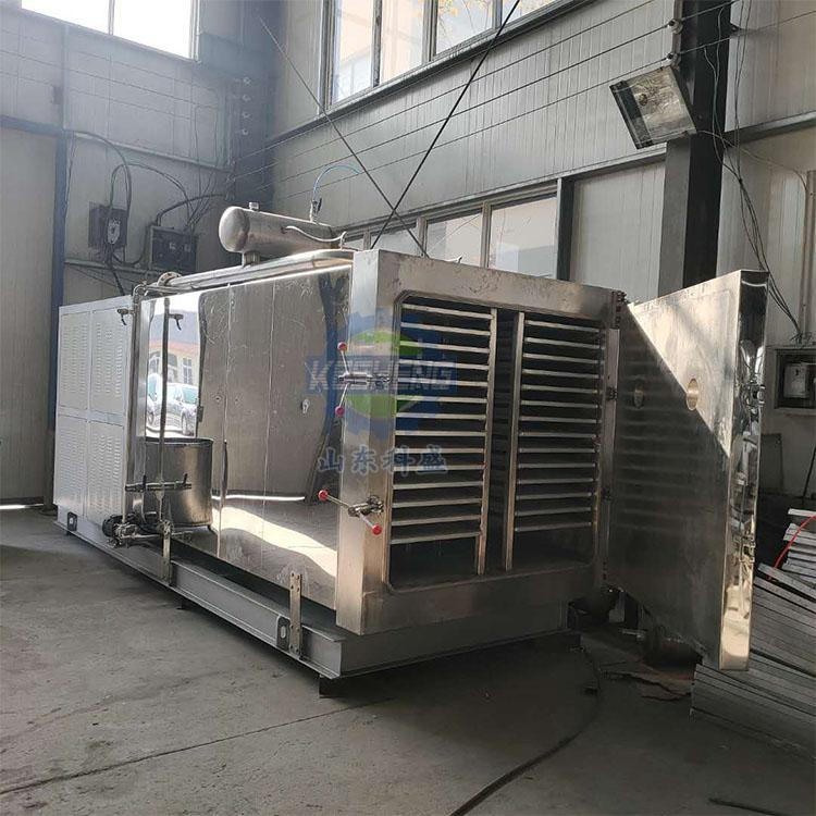 海鲜鱿鱼真空冻干机 海参低温冷冻冻干机厂家 科盛真空冻干机价格