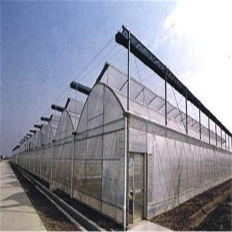 智能温室含义 智能温室装备 千宏温室 智能温室玻璃大棚