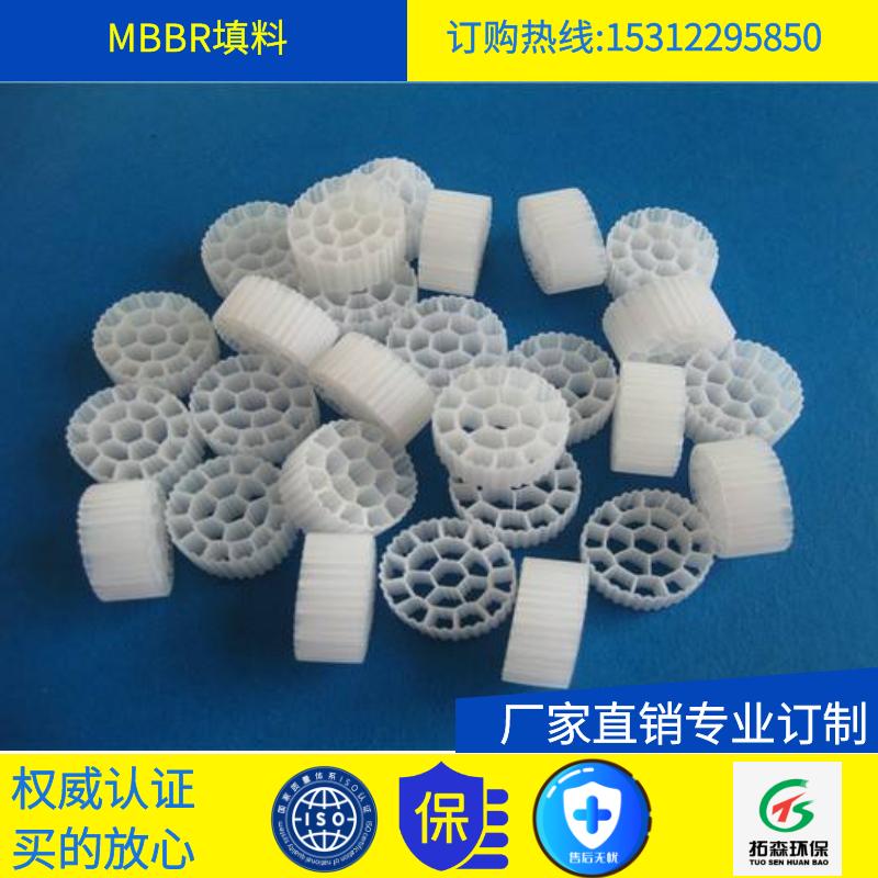 MBBR填料 φ25 环保配件 江苏拓森厂家供应各类环保填料配件