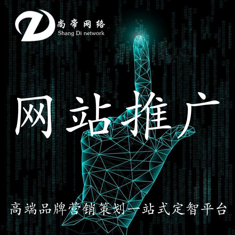 网站建设 尚帝公司网站建设