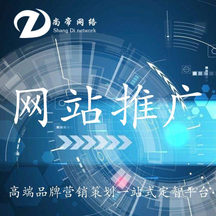 网站建设 尚帝网站建设企业