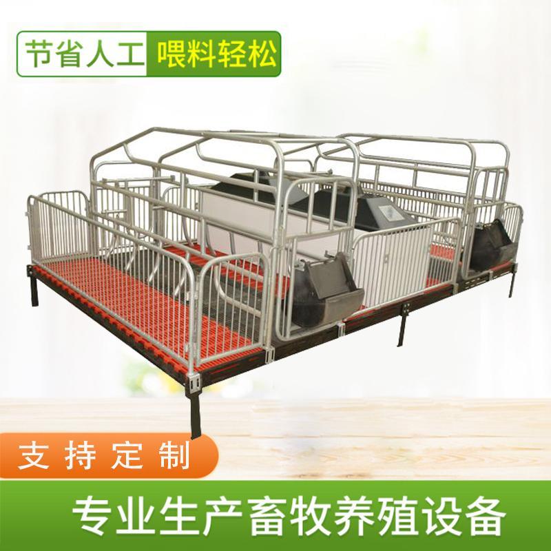 宏栋畜牧_2.2m*3.6*0.9m 母猪产床_双体产床_猪用产床_养猪设备热镀锌产床