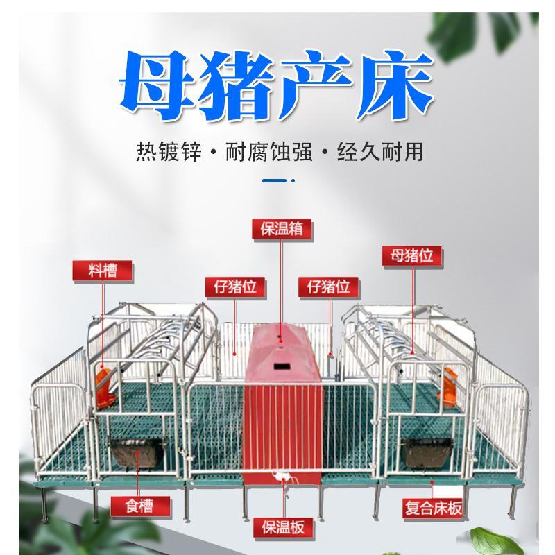 宏栋畜牧 2.2m*3.6*0.9m塑料保育床 复合板加厚母猪产床 保育床 产床