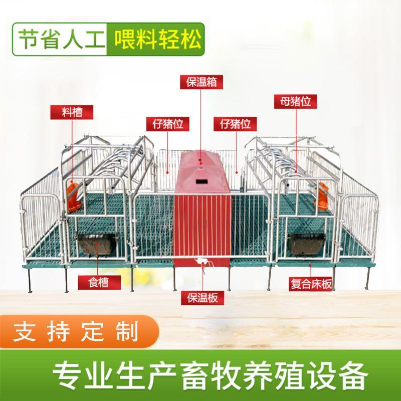 宏栋畜牧 2.2m*3.6*0.9m 全复合双体母猪产床 热镀锌母猪分娩床