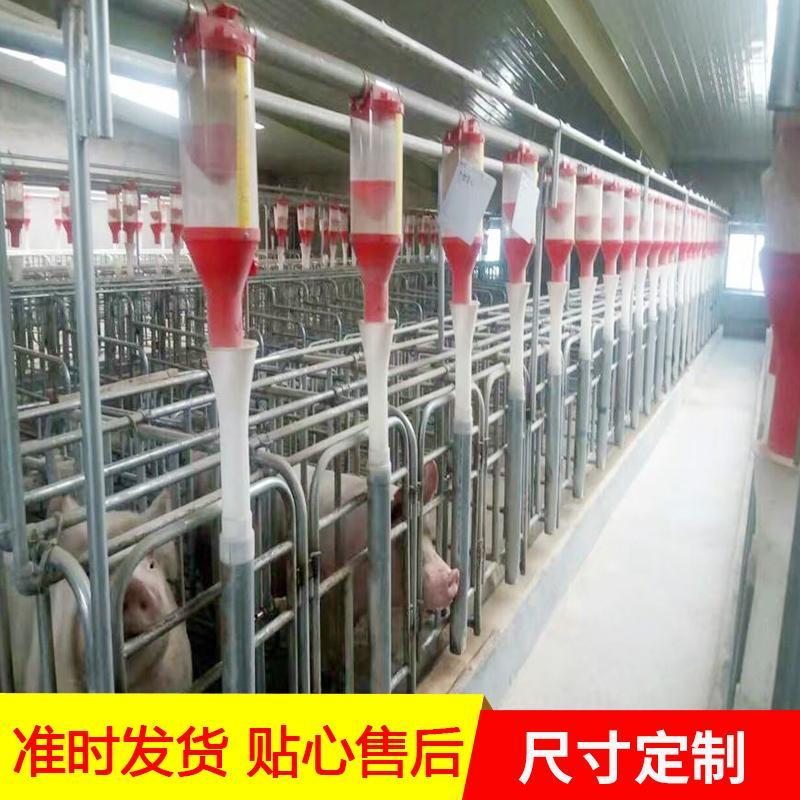 厂家生产养猪料线 机械料线 喂猪猪自动料线 现货供应