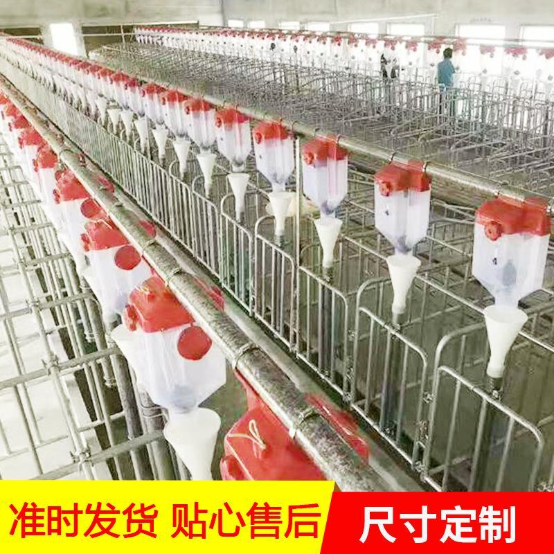 生产养猪料线 机械料线 喂猪猪自动料线 现货供应