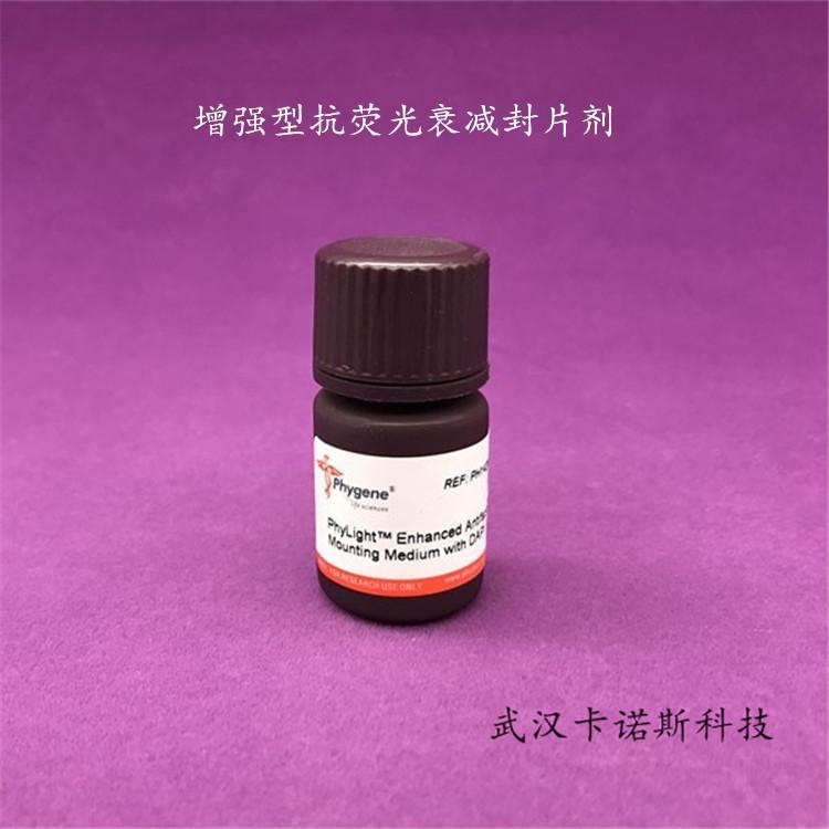 增强型抗荧光衰减封片剂 5mL 当天发货