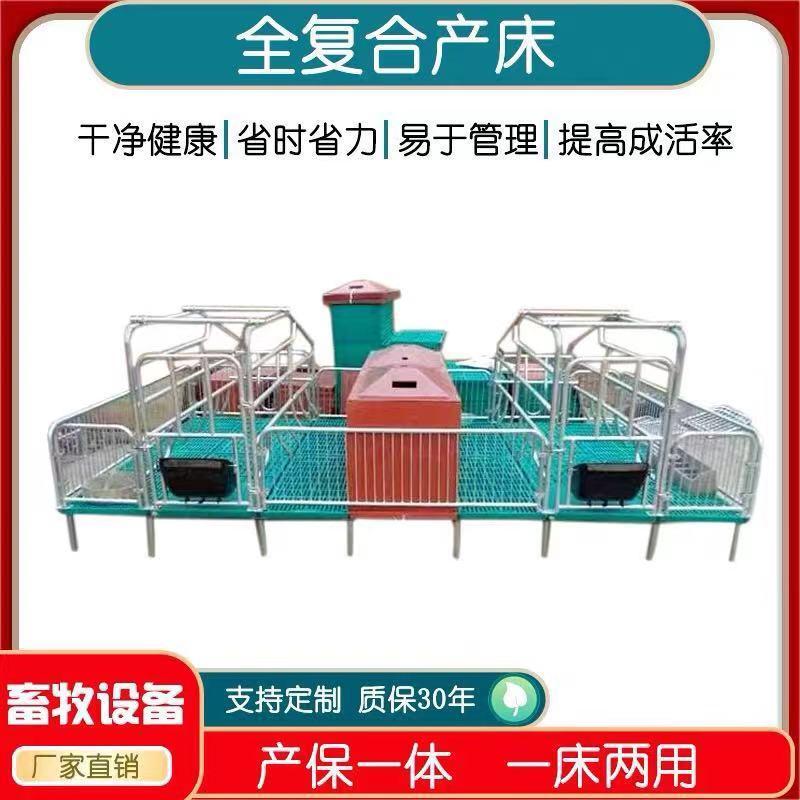 主要生产母猪产床 养殖设备双体母猪分娩床 全复合养猪定位栏宏栋畜牧服务周到