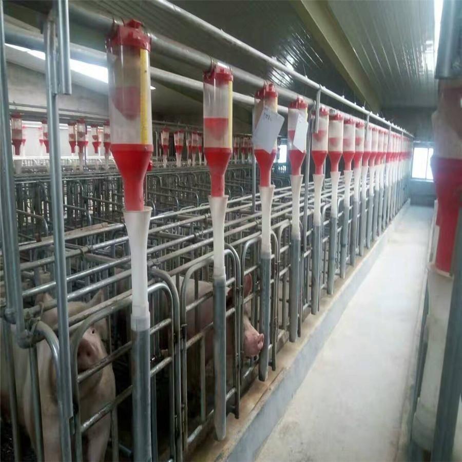 料线 自动料线 全自动化料线 加工养殖料线