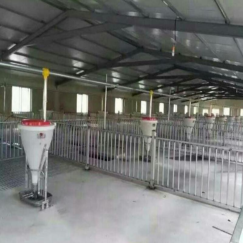 宏栋畜牧-60型-自动料线 养猪自动化料线 猪舍设备自动化料线