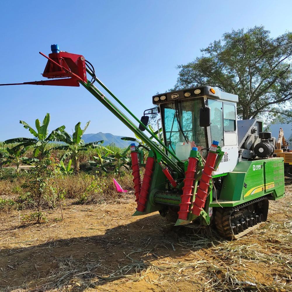 2021款新型整杆式甘蔗收割机 4GL-1A型甘蔗联合收获机