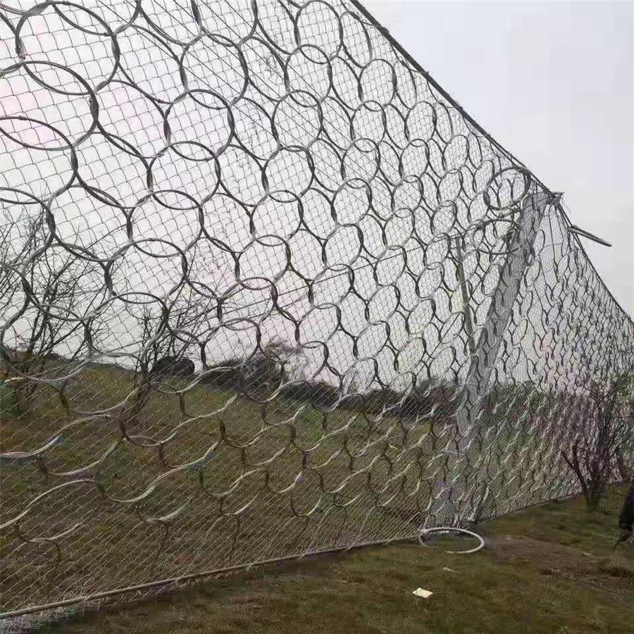 被动环型防护网 菱形边坡防护网 绿化铁丝网 斯登诺一手货源