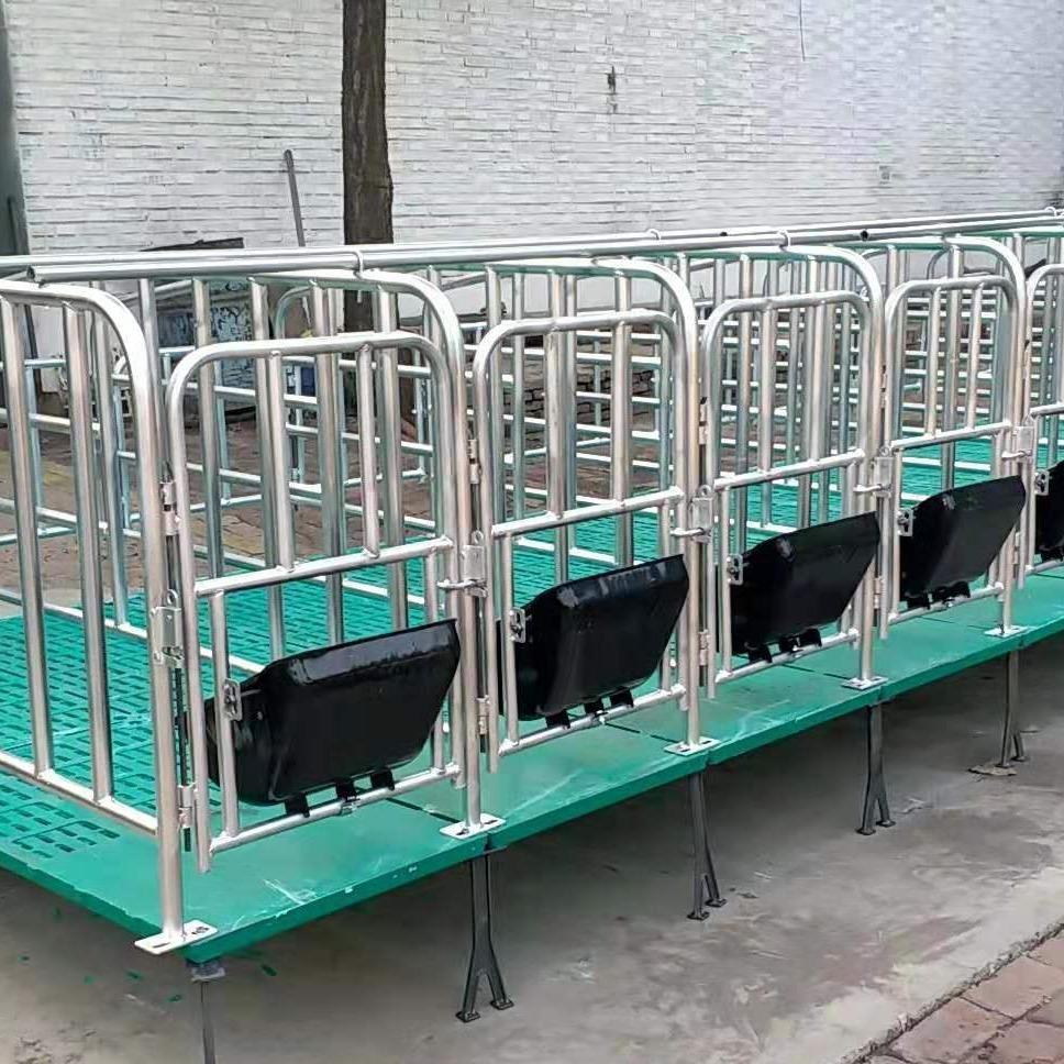 宏栋畜牧-主要生产母猪产床 全复合养猪定位栏 养殖设备双体母猪分娩床